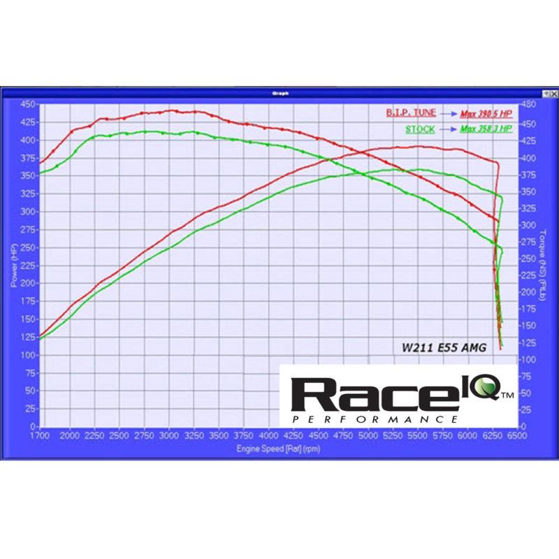 RaceIQ stock dyno chart